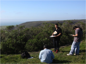 Cruz Vasquez (left) and AMLT Native Stewards Nathan Vasquez (middle) and Abran Lopez (right) record information about ethnobotanical plants at BLM Coast Dairies property. Photo courtesy Rob Cuthrell