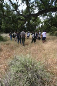 Park staff and tribal members consult on the management of deergrass, pictured in foreground. Photo courtesy Paul Johnson