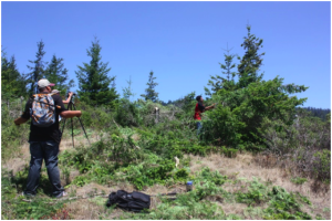 Tribal Stewards clearing coastal prairie at Quiroste Valley Cultural Preserve. Photo courtesy Rob Cuthrell