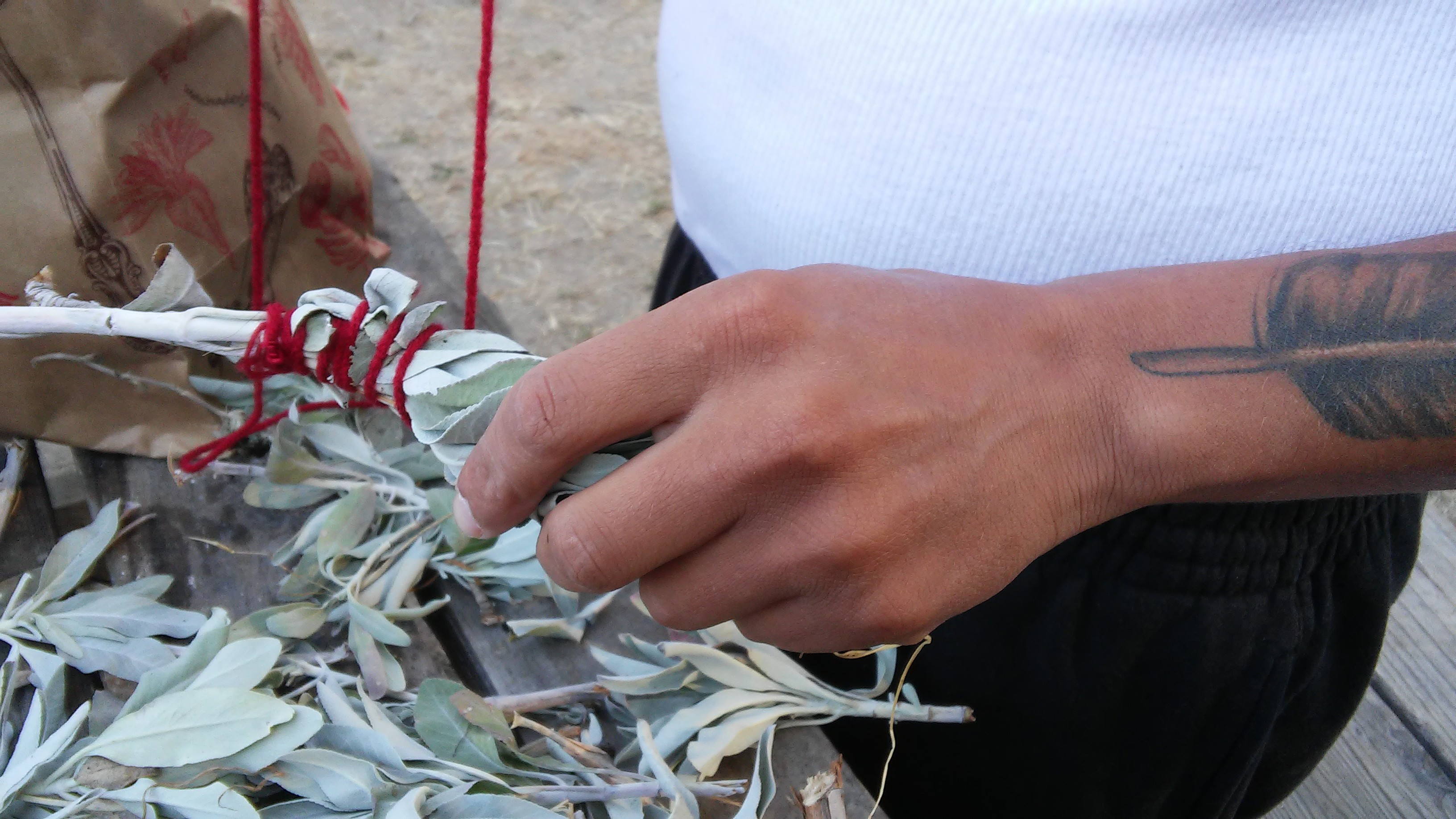 Native Steward Gabriel Pineda wraps white sage (Salvia apiana), gathered from the UC Santa Cruz Arboretum's Amah Mutsun Relearning garden, into smudge sticks for ceremonial use.