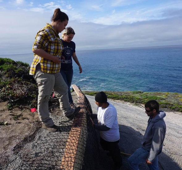 Gabriel Pineida (AMTB) helping to build a retaining wall to protect and preserve archaeological deposits at CA-SCR-7 with (from left to right) Amanda Dobrov (UCB undergraduate), Michele Maybee (UCB undergraduate), and Rob Cuthrell (UCB archaeologist). Photo courtesy Kent Lightfoot.