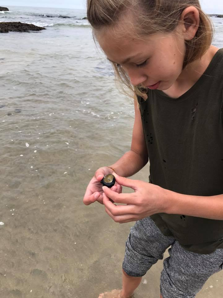 A camper gets a closer look at a black turban snail shell. Photo courtesy Abran Lopez.